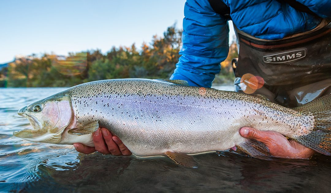 South Pioneers Fly Fishing in Patagonia